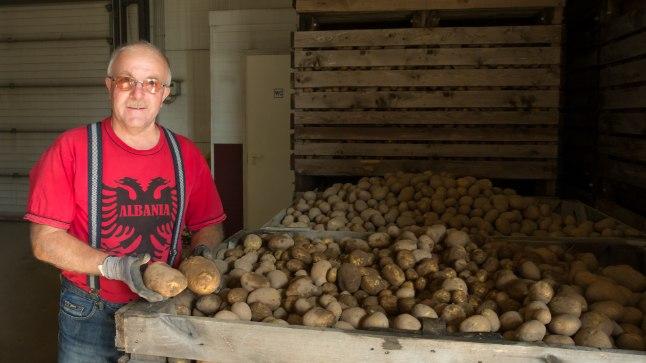 """PÕUASE SUVE KARTUL: """"Kiidame Eesti kartulit, see on kohalik sort Teele,"""" näitab Einar Saar äsja põllult toodud saaki."""