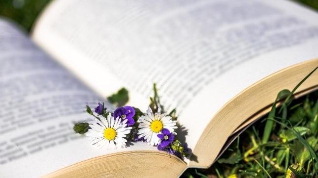Loodused ja kirjandusest