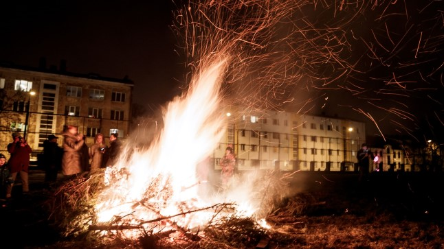Mullune kuuskede põletamine Superministeeriumi taga