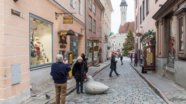 Tõnis Erilaiu lehesaba   Kuidas Tallinna majad said numbrid