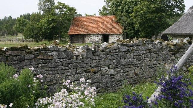 Tõnis Erilaiu lehesaba | Kuidas kangelane Jaak Vilsandi vanakurjast vabastas