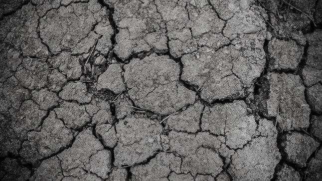 AVESTA 11. veebruar |  Müüdi kohaselt võivad täna maapinnast eralduda igasugu deemonid ja koletised