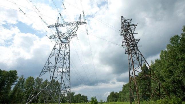 Kevadtööd elektriliinide lähedal tekitavad elektrikatkestusi