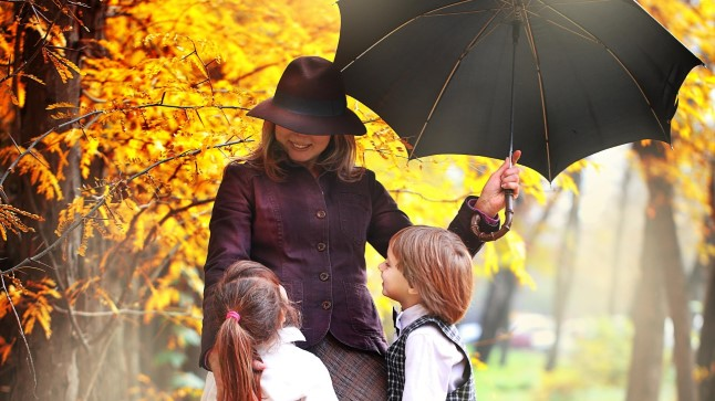 874fc859d06 IDATUUL PÖÖRDUS: Viimsi varganäost Mary Poppins mõisteti tingimisi vangi