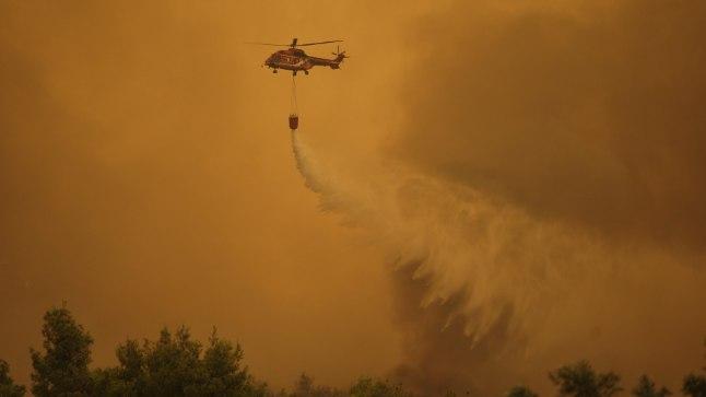 FOTOD | Kreeka saarel möllanud põlengus hävib haruldane männimets