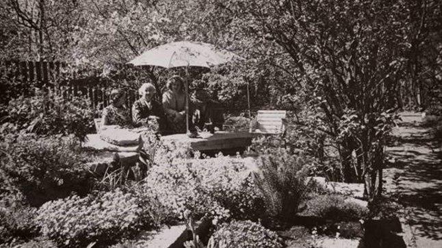 Elo ja Friedebert Tuglas ning Elo Kurvits päikesevarju all aias (1959).