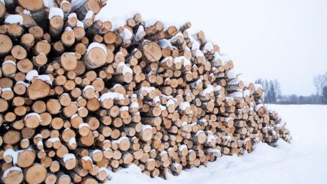 Küttepuude tootjad tänavuse talve üle ei kurda | Õhtuleht