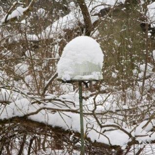 Esimeseks jõulupühaks prognoosivad arvutused üksmeelselt talvist ilma