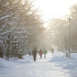 Uus nädal algab mitmel pool Eestis valge maaga