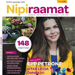 Septembrikuu Nipiraamat- 164 lk põnevat lugemist!