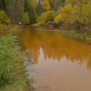 <font color=&quot;#628e24&quot;>FOTOD JA VIDEO |</font> Vesi on sulgenud Soomaa rahvusparki viiva tee