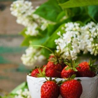 Kasvata <font color=&quot;#1877b9&quot;>poemaasikast</font> maasikataimed