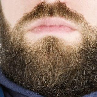 MIDA PEAKSID TEADMA: Mehel on suur habe? Kuidas temaga suhelda (nagu inimesega)