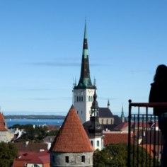 Tõus terve Tallinna peale oli keskmiselt 5 protsenti.