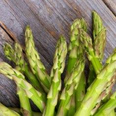 """Kalli kilohinnaga hõrku delikatessi sparglit saab edukalt kasvatada ka oma aias. Taim ei karda külma, ei vaja erilist hoolt ja annab ohtralt saaki.  Eesti poodides algab sparglihooaeg enamasti aprillis, mil müügile saabuvad Kreeka, Hollandi või Ungari sparglid. Eesti koduaias pistab see taim nina mullast välja maikuus. Eestis sparglit ehk botaanilise nimega harilikku asparit (Asparagus officinalis) kasvatava Uus Kongo talu kogemused ütlevad, et taim hakkab kasvama siis, kui mullatemperatuur on 8 kraadi. Kuna spargel on väga kiirekasvuline, siis sõltub soojusest ka sparglihooaja pikkus – enamasti kestab see umbes kuu aega. Vananevad võrsed puituvad ega kõlba enam söögiks. Sparglikasvataja Aira Kriisa on öelnud: """"Kui on 15 soojakraadi, kasvab spargel söömiskõlblikuks ühe ööpäevaga, kui aga 25 soojakraadi, siis tuleb hommikul esimene korjamine ja õhtul teine.""""  Spargel jagamise teel Enne saagi saamist tuleb aga taim kasvama panna. Kui kasvatada seemnest, saab saaki alles kolmand"""