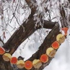 Vajadvaid lihtsaid käepäraseid vahendeid,et valmistada dekoratiivne linnusöötja-vanik. Vaata lisa videoõpetusest!