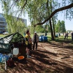 Уже которую неделю группа людей дежурит возле серебристой ивы в Хааберсти, надеясь спасти мешающее строительству дороги дерево от вырубки.