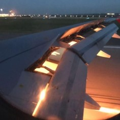 Jalgpalli maailmameistrivõistlustel osaleva Saudi Araabia koondislased said šoki osaliseks, kui nende lennuk teel Rostovi lennujaama põlema süttis. Leekide põhjuseks oli mootorisse lennanud lind.