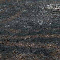 Tartumaal leiti kulupõlengualalt põletushaavadega mehe surnukeha
