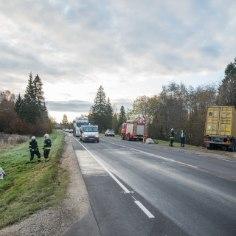 Saatuslik õnnetus: kolm hobust hukkusid autorataste all