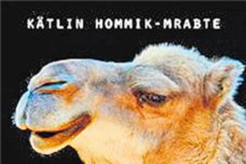 Tartu Genialistide Klubi läheb Marokosse seiklema