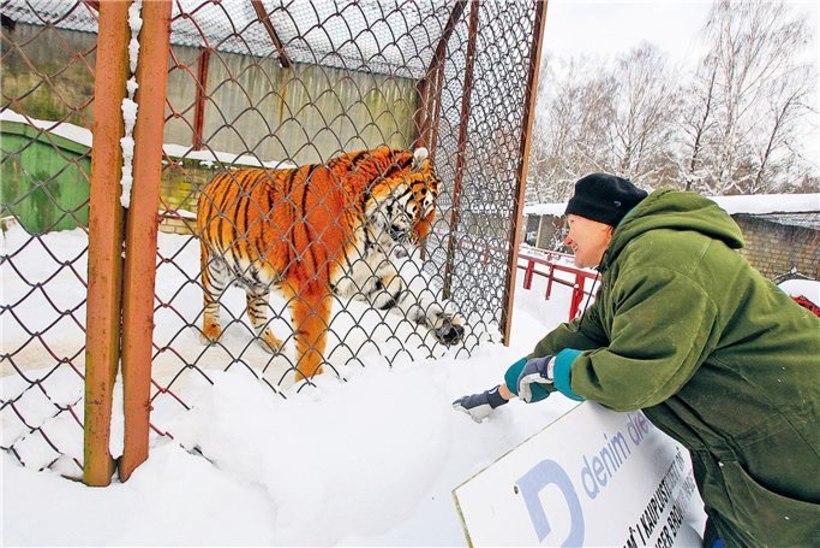 Loomaaed leinab