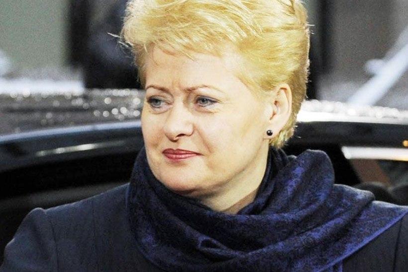 Grybauskaite: tapatöö süüdlased saavad karistatud