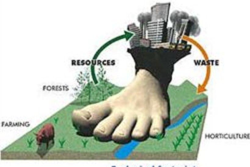 5ce70cfc0f7 Meeste ökoloogiline jalajälg on naiste omast suurem | Õhtuleht