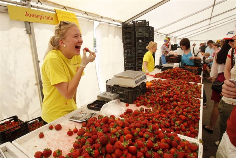 Kaupmees maasikafestivalil: müüme mitu tonni marju