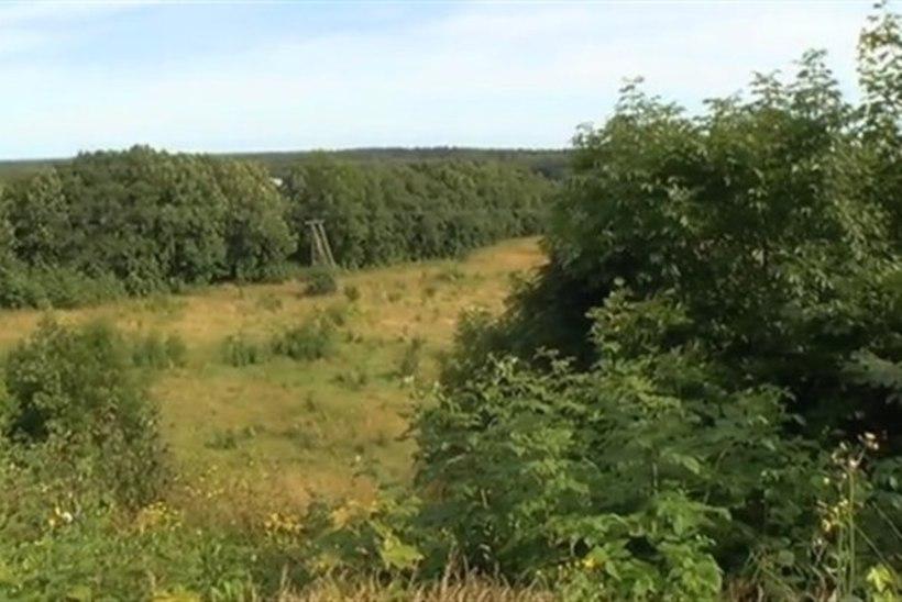 TV3: Viimsi vald hakkab slaalominõlva ehitama