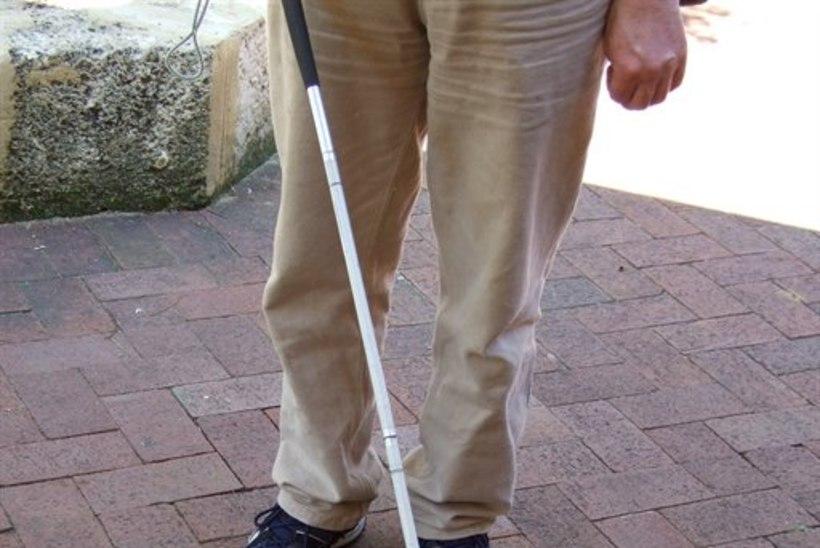 Sotsiaalkomisjon arutas nägemispuudega inimeste tugisüsteemi korraldamist