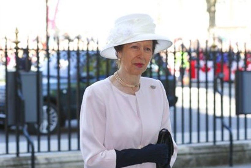 02c339196c8 VISKA PILK PEALE: printsess Anne kannab isegi 32 aastat vana kleiti ...