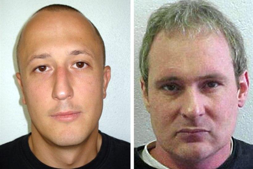 Prantsusmaal nabiti kinni üks kurikuulsatest Roosadest Pantritest