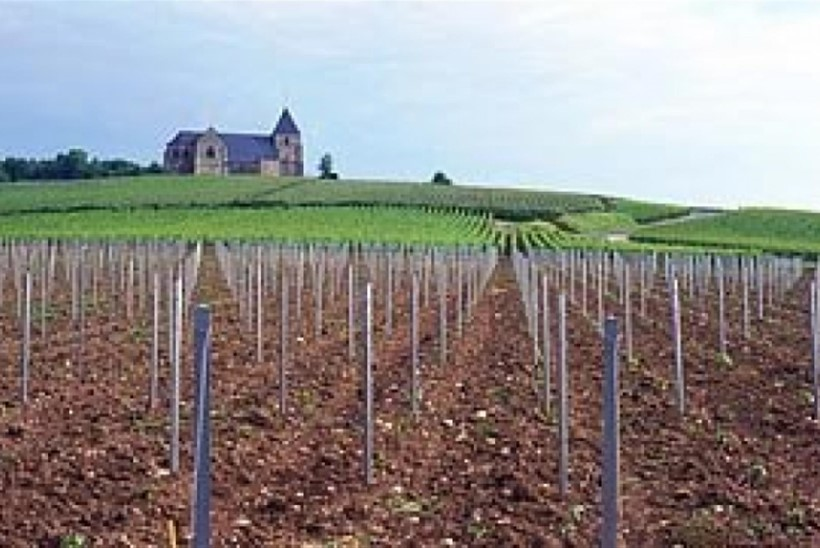 Prantsusmaa veinid