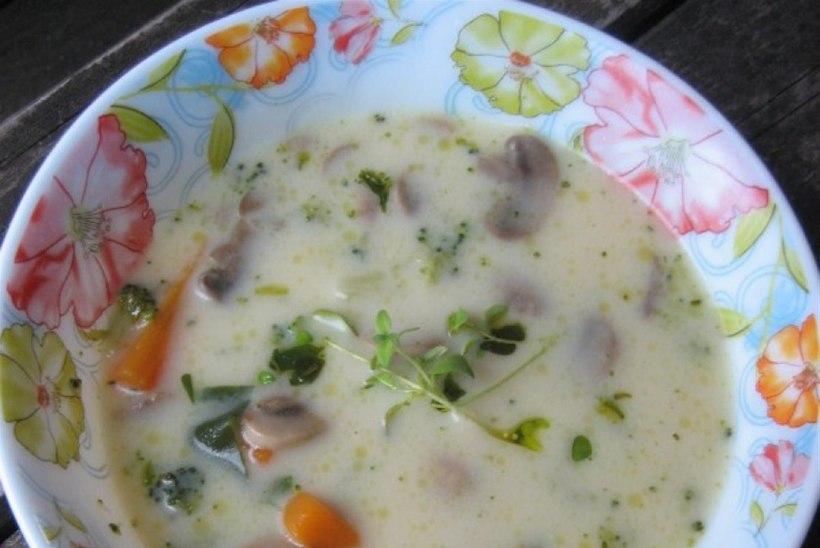 Tervislik juustune seene-kanasupp