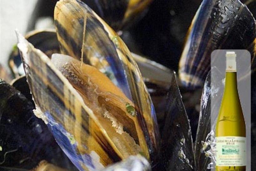 Ürdi-veinikastmes merikarbid