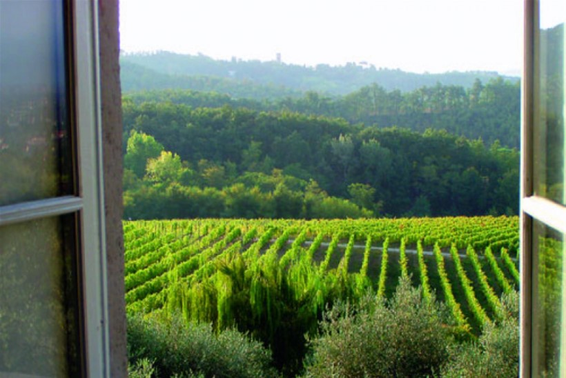 Piemonte - veinid mäe jalamilt