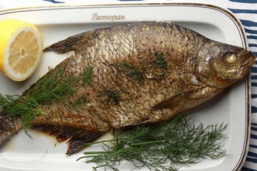 Värske kala suvelaadalt