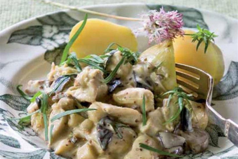 Koorene kanapada seente ja sinepiga
