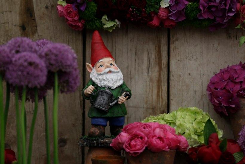 Kes sokutas viimased 10 suve Lincolnshire'i aedadesse aiapäkapikke? Tõde selgus salapärase mehe matusel