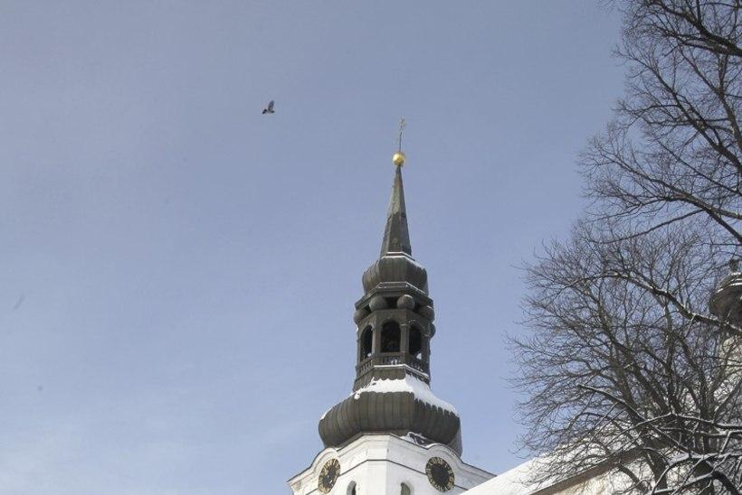 Jõuluteenistus tuleb televaatajaile Toomkirikust