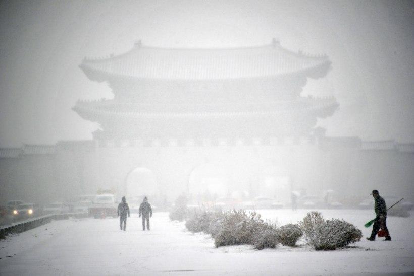 PILTUUDIS: Lõuna-Koread tabas tihe lumesadu