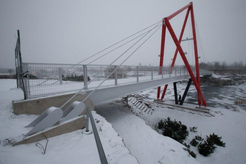 Tugev tuul lõhkus Lasnamäe uhiuue silla kandetrossi
