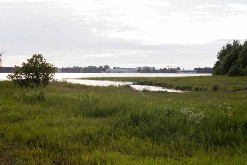 Tallinn taotleb Ülemiste järve sanitaarkaitseala linna omandisse