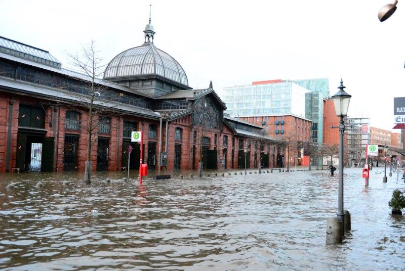 GALERII: Euroopa põhjaosa rüüstas ja uputas orkaan Xaver