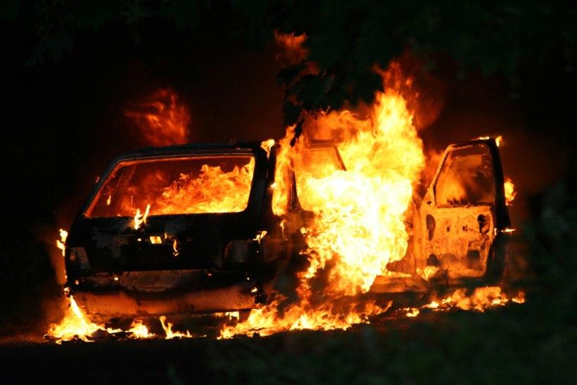 Nad vägistasid neiu, sulgesid  ta siis pakiruumi ja süütasid auto põlema!