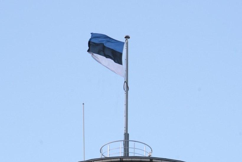 702 eurot kulus läinud aastal Pika Hermanni lippudele