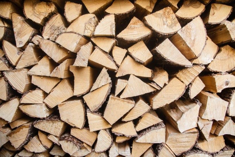 Soe talv pole küttepuude hinda langetanud