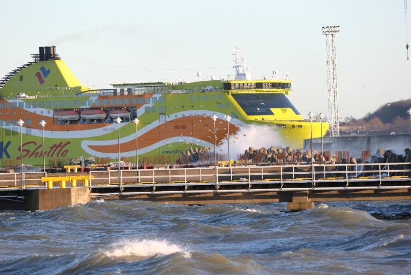 Tallinki homsed reisid toimuvad graafiku järgi, kuid sadamasse peaks tulema ajavaruga