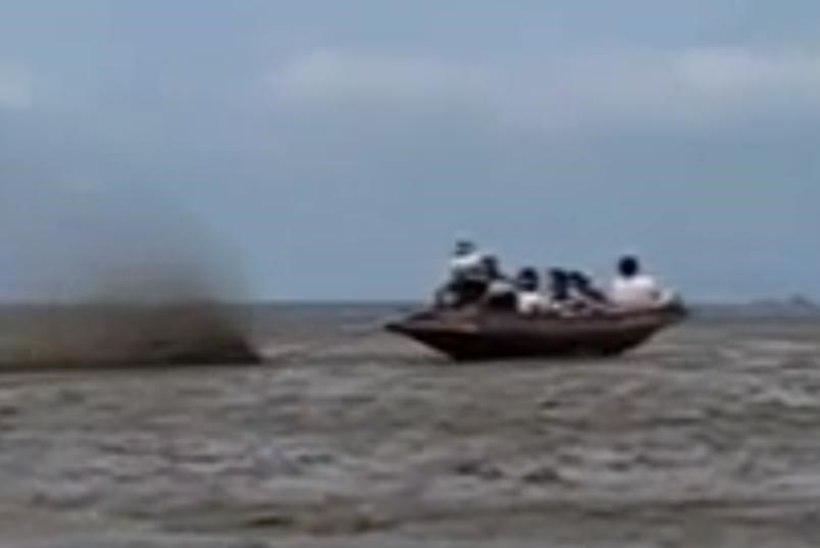 VIDEO: Taimaal paadid sõitmiseks vett ei vaja!